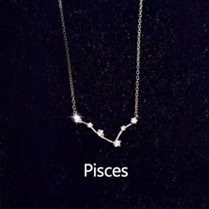 NEW!! ♓️ Pisces Constellation Necklace
